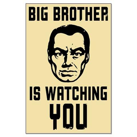 big-brother-poster-2381165972453434313.jpg